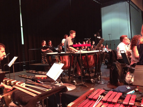 2014 Anime Expo Orchestra Concert with Ted Atkatz on the timpani
